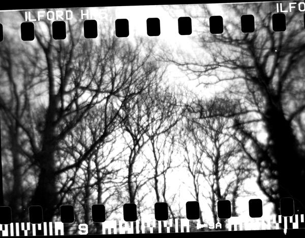 full frame film exposure