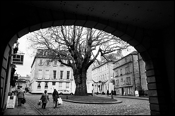 archway with tree