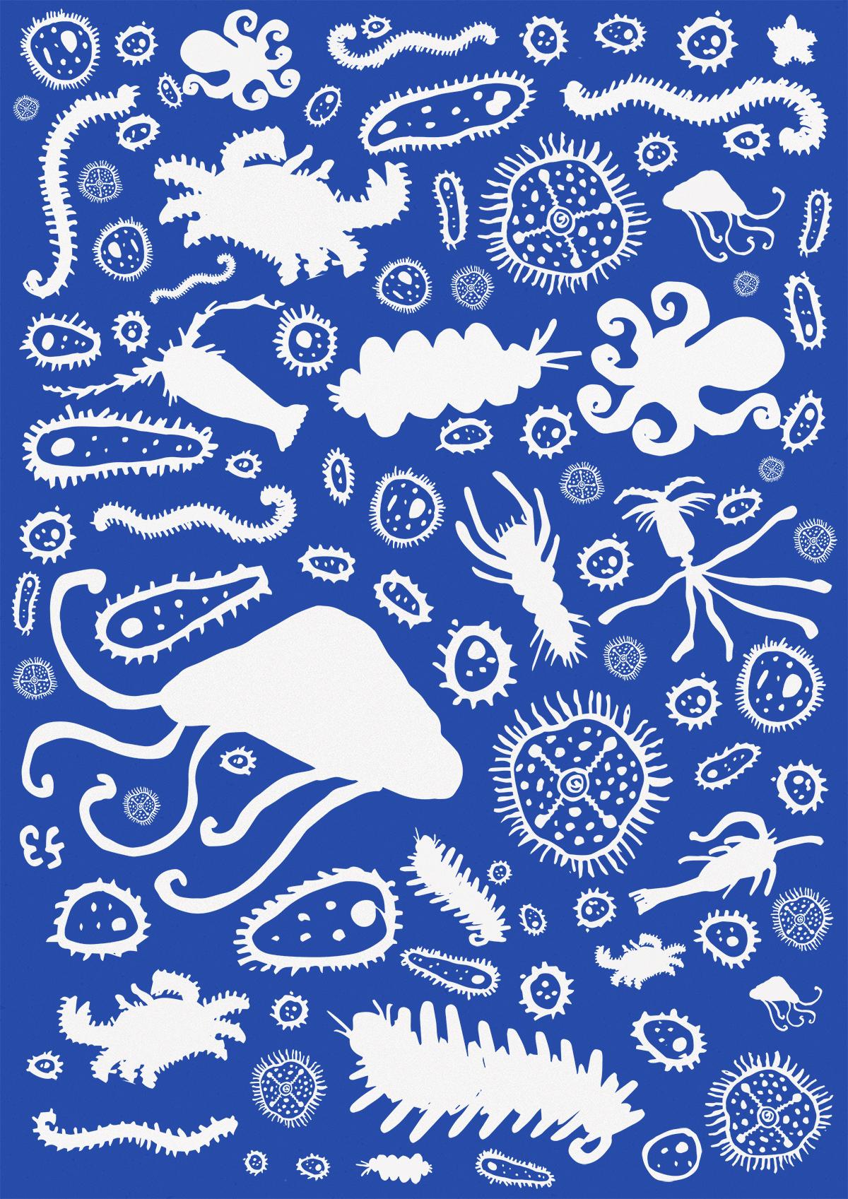 plankton illustration